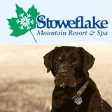 Stowe VT Pet Friendly lodging at Stoweflake Resort and Spa Stowe VT