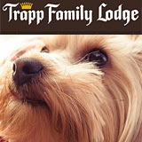 Stowe VT Pet Friendly Lodging at Trapp Family Lodge