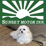 Sunset Motor Inn - Stowe Vermont Pet Friendly Lodging